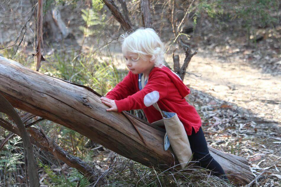 child climbing tree on an indigenous bird walk