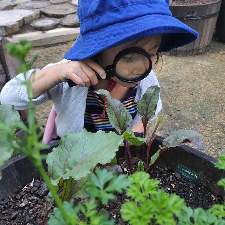 child using magnifying glass to look at plants in community garden