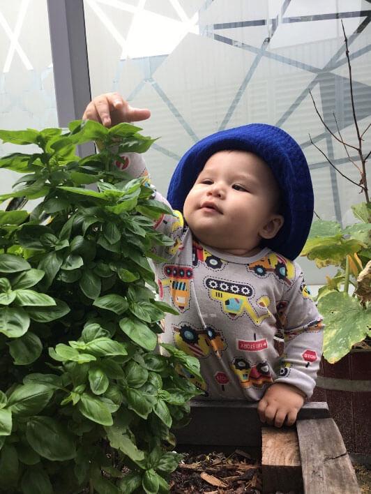 baby wearing hat touching plant in community garden